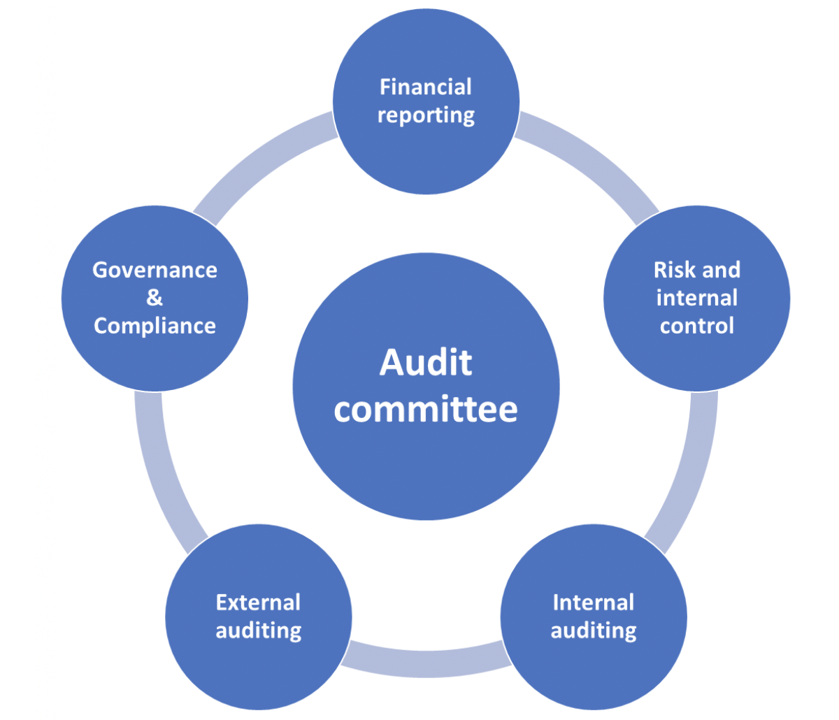 qualified audit academy audit committee